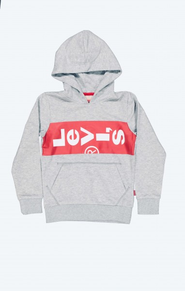 Sweat Shirt Lazyhoody Gris Chine