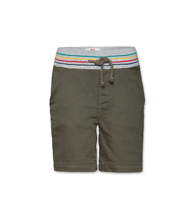 Jason Colour Shorts olive